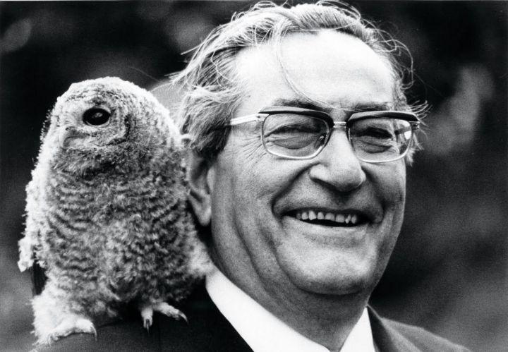 El poeta Luis Rosales.