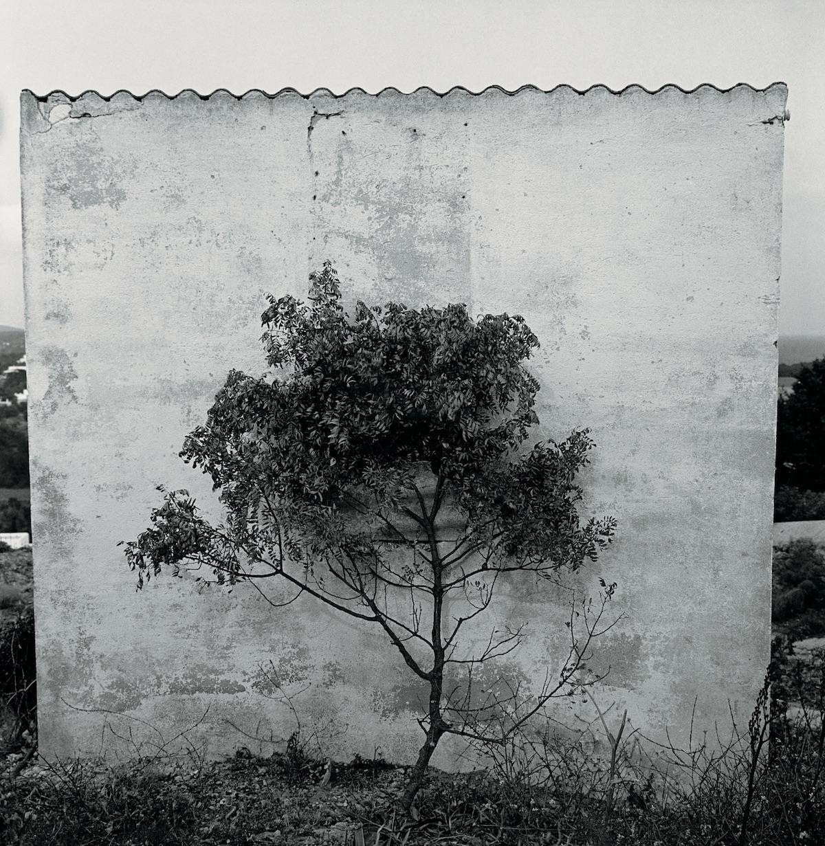 Ibiza, 1960. Una sociedad apartada del circuito comercial y cultural.