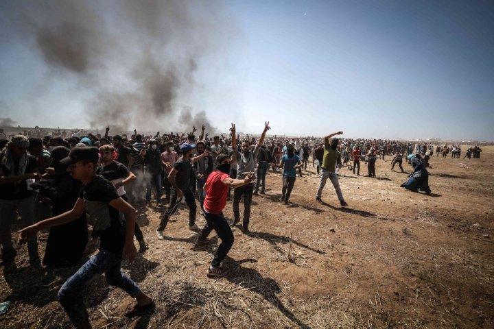 Resultado de imagen de Las ONG como fuente incontestable en el conflicto palestino-israelí