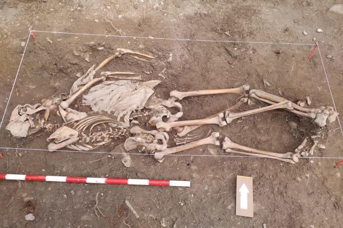 Hallados en Castillonuevo restos de dos maquis, padre e hijo, asesinados en  1944 - Diario de Noticias de Navarra