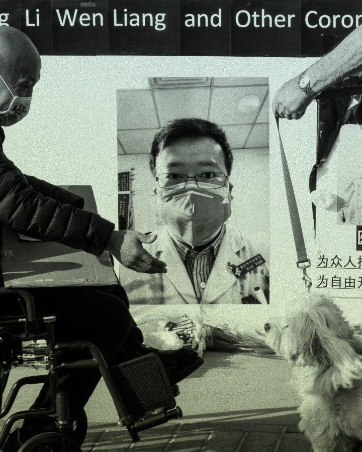 La imagen puede contener Muebles Silla Persona humana Gafas Accesorios Accesorio Animal Perro Mamífero Mascota y canino
